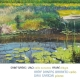 capa Saint-Saëns, Lalo: Cello Sonatas | Fauré: Élégie (LIVE)